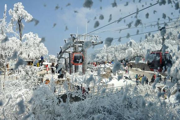 TMS snow