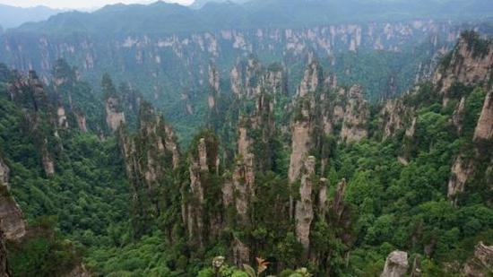 Zhangjiajie Wonderland