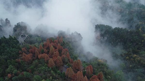 Tianzishan mist3